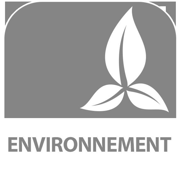 Icône : Environnement