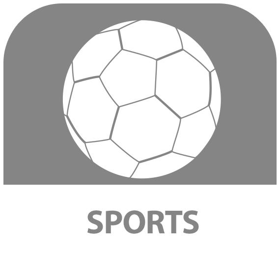Icône : Sports