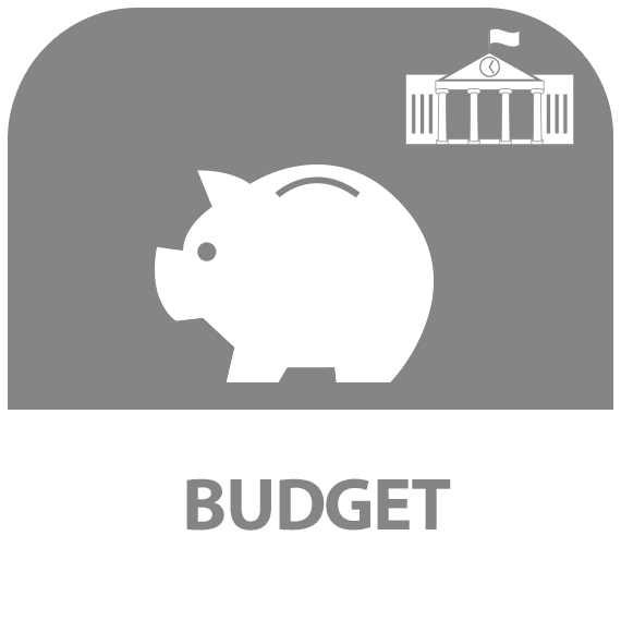 Icône : budget